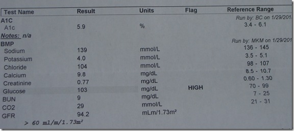 DSC02624 thumb Feb 2013 Test Results and Why It&rsquo;s Good to Get the Details