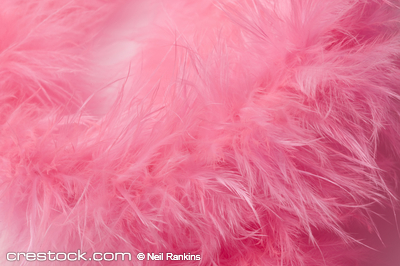 pink feather boa detail